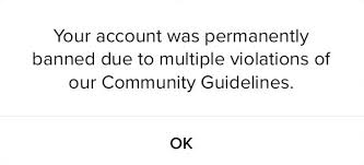 Your account is permanently banned due to multiple community guidelines violations